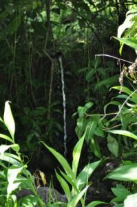 eerste waterval